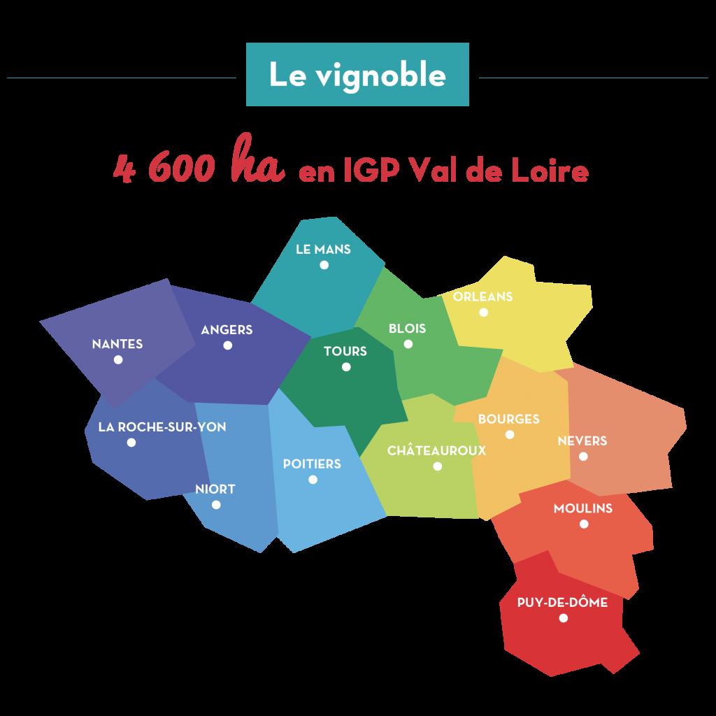 Carte des départements producteurs d'IGP Val de Loire